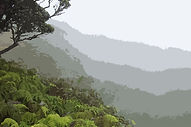 Maui conservation watershed forest Hawaii