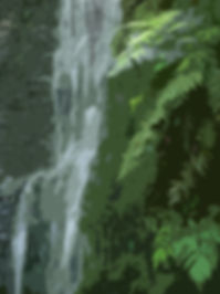 Maui Conservation Forest Waterfall