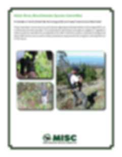Maui Nui Natural Areas Weed Management F