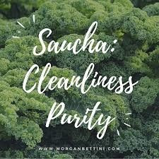 Saucha — Bringing the Conscious Nourishment of the Niyama of Cleanliness