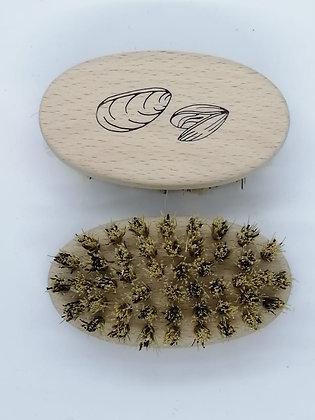 brosse à coquillages
