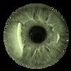Auge_in_grün.png