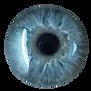 blaue Pupille.png