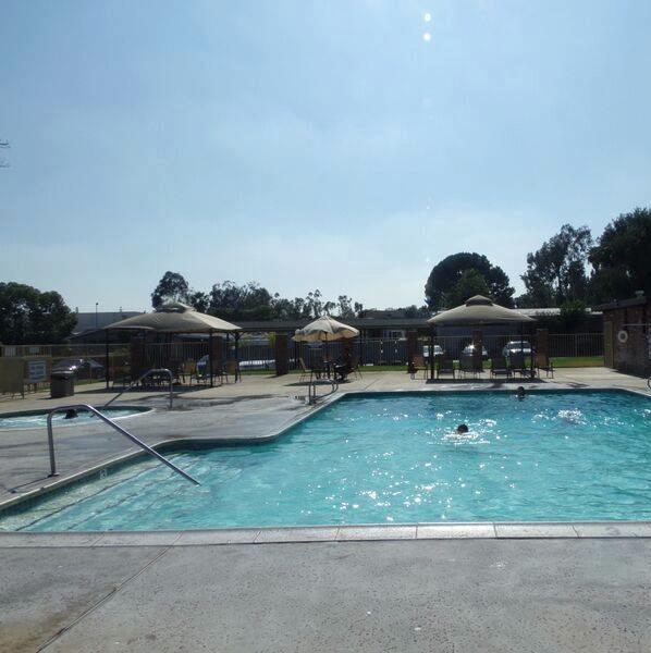 Lamplighter Ontario Pool