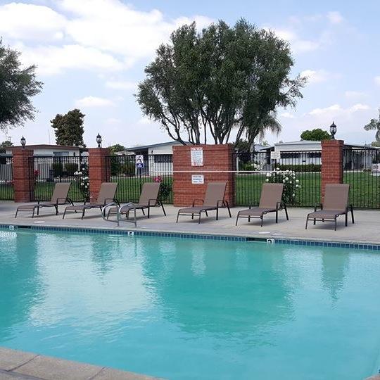 Lamplighter Chino Swimming Pool
