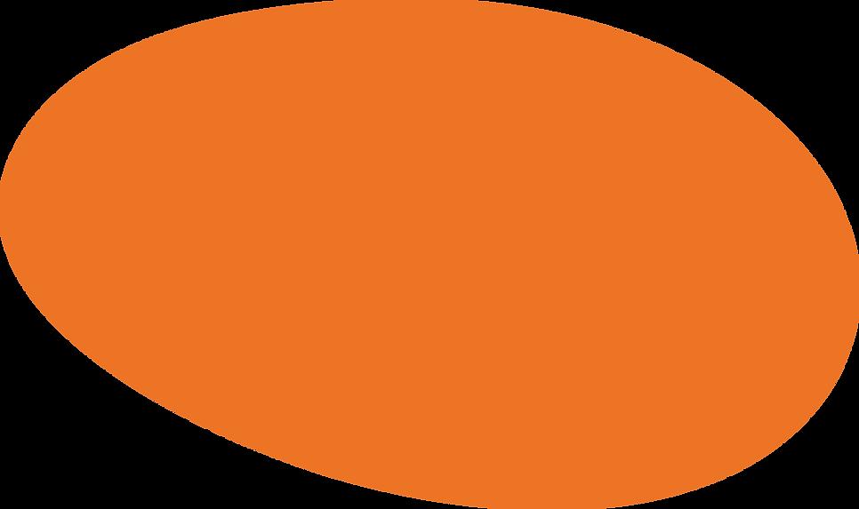 wow_orangecircle.png