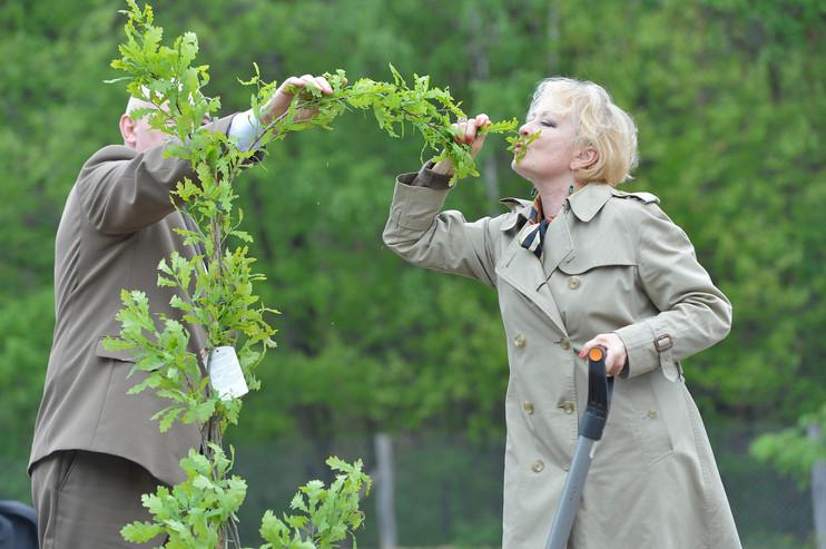 Magdalena Zawadzka całuje drzewo Gustawa Holoubka, Las Kultury