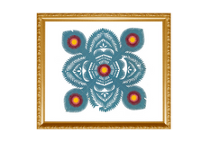 Forma: Gwiazda rogowa