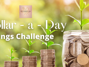 The Dollar – A – Day Challenge
