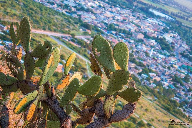 Guanajuato 2.jpeg