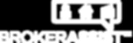 BrokerAssist Logo.png