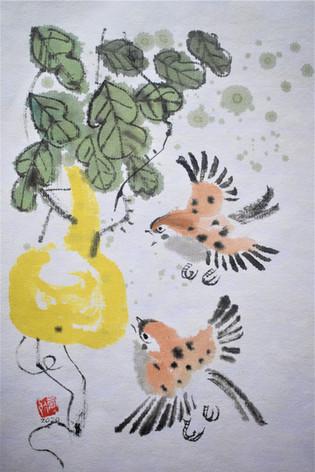 sparrows 1.jpg