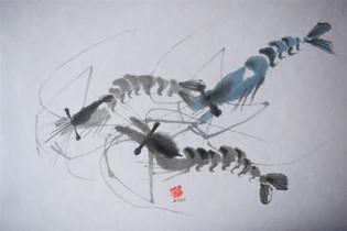 Shrimps 1.jpg