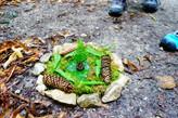Freitag 24.07 - Naturmandala im Wald