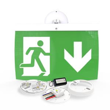 NFW-SDT/EL40D 40m Maintained Exit Sign Kit - DOWN arrow (ISO7010)