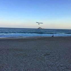 pousando do mar para a areia de asa
