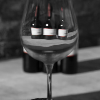 Montecorboli wine