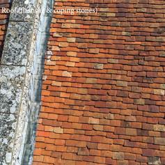 Main Roof Front.00_01_26_27.Still011.jpg