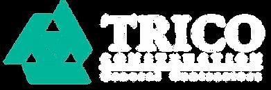 12.27.06 trico leaderhead logo 16x48 whi