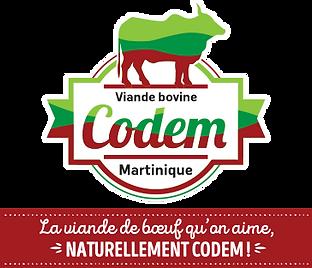 logo-CODEM-quadri+nvlle-signature.png