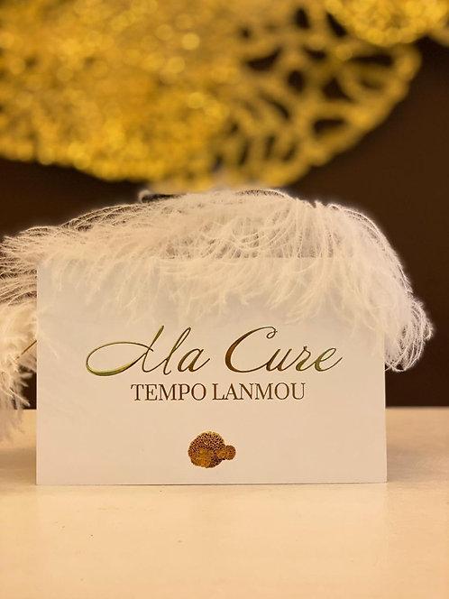 La cure Tempo Lanmou à partir de 70€