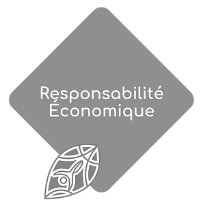 Ethicare responsabilité Economique