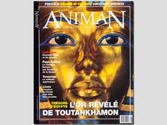 Animan, Touaregs