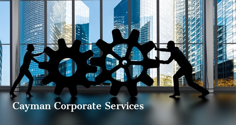 silhouettes-of-business-partners-moving-