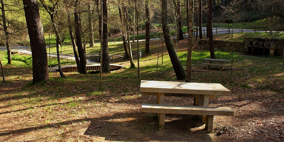 18/10: XABARÍNS TANDA 2: Parque Forestal Pouso (Vigo)
