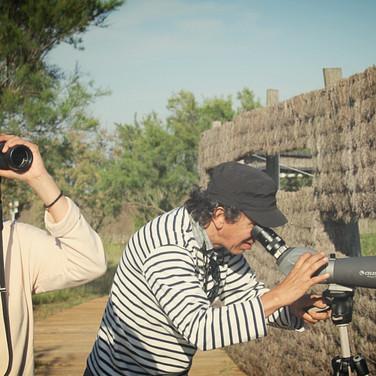 Observación de aves e fauna