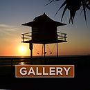 SOCIAL-PROFILE---gallery-v3.jpg