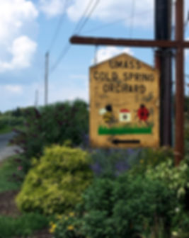 umass cold spring orchard sign