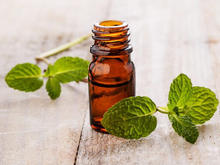 Oil of the Month - July - SPEARMINT