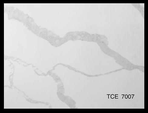 TCE 7007