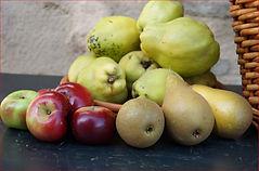 SI EXT CROP eigen fruit DSC02156.JPG