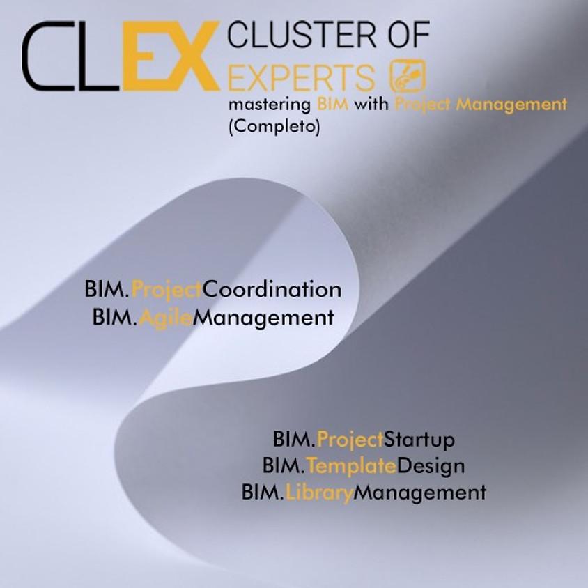 BIM.ProjectManagement - Completo