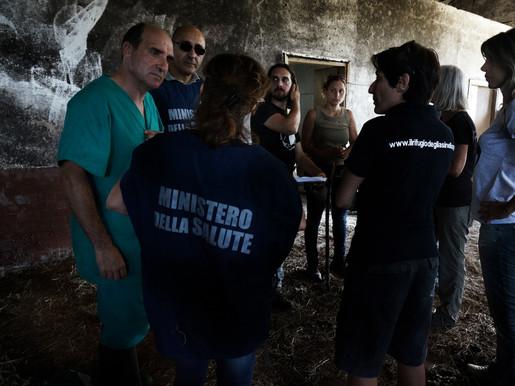 Italian Horse Protection, cosa abbiamo fatto in 1 anno (2013)