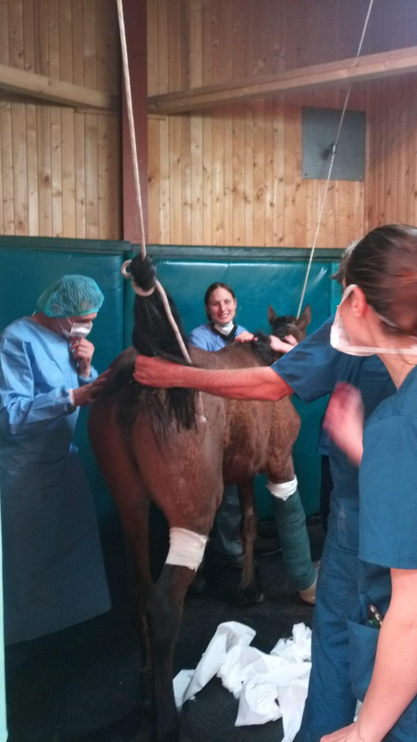 il risveglio dall'anestesia
