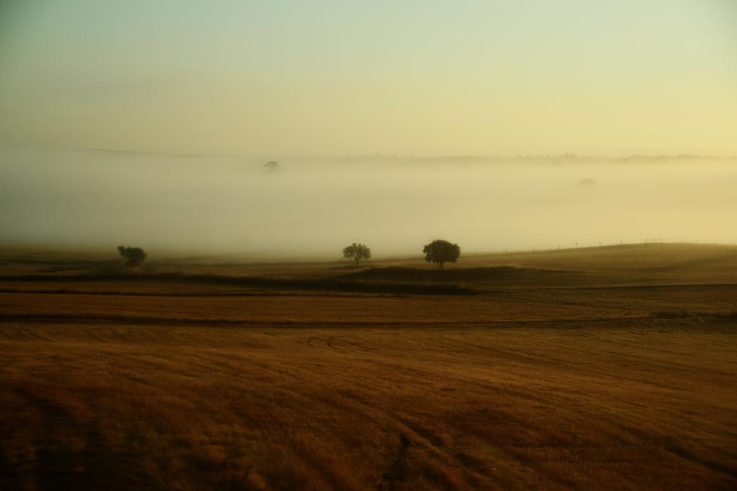 Portugal, landscape at sunrise