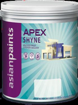 ASIAN APEX SHYNE