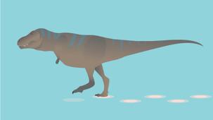 Researchers estimate the Preferred Walking Speed of T-rex