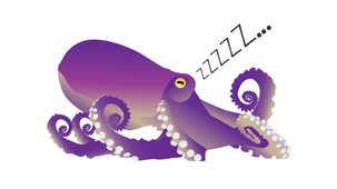 Octopus sleep has cycles resembling REM and Non-REM