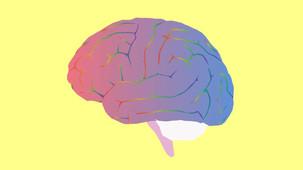Microdosing may alter personality