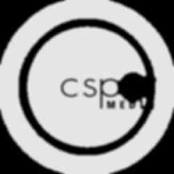 Script:logo.png