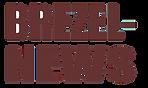 logo-brezelnews.png