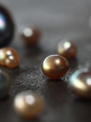 Perlas de La Paz.jpg