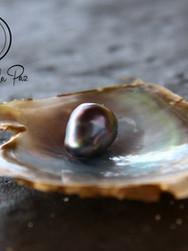 Perla de La Paz en madre perla.jpg