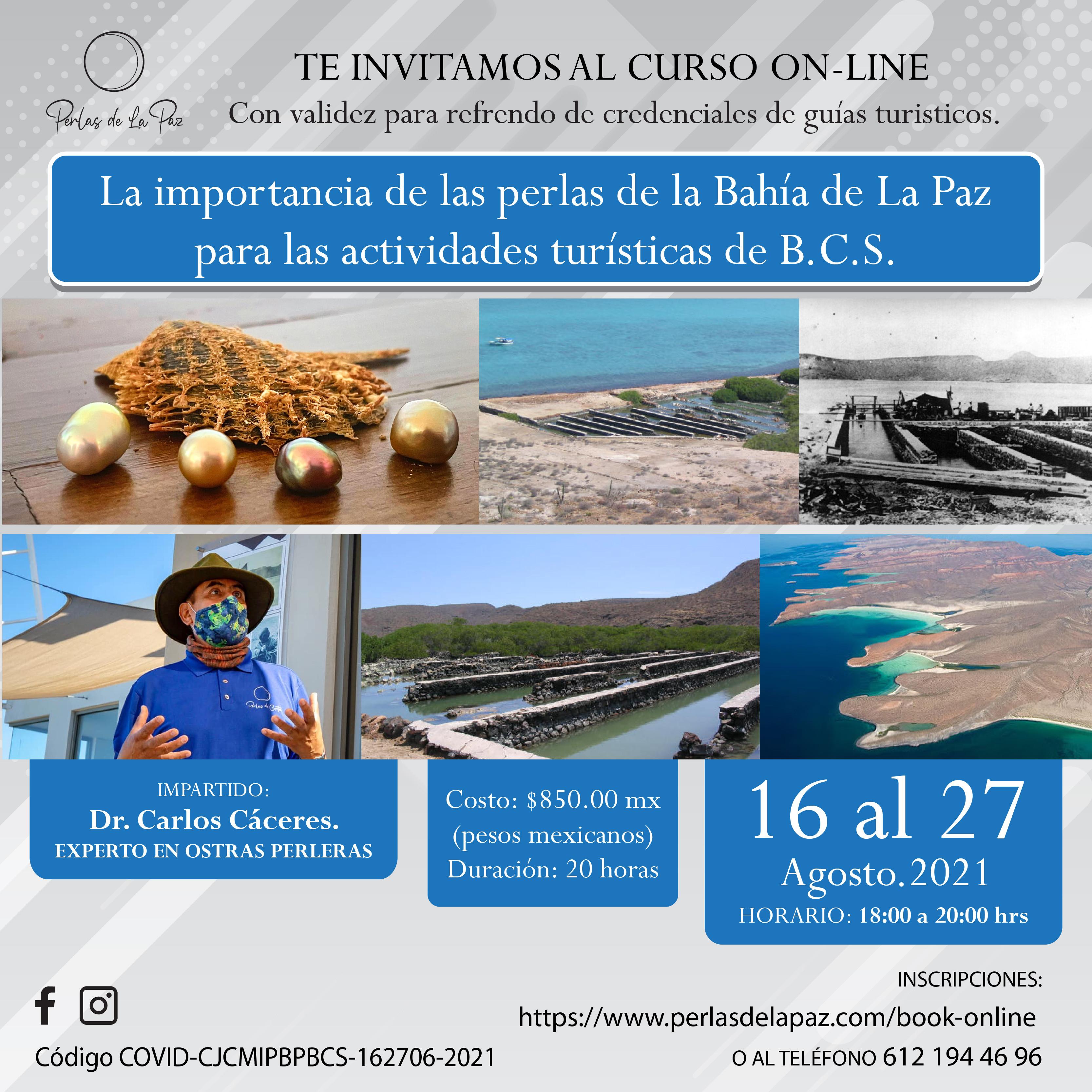 Curso: Las Perlas de La Bahía de La Paz
