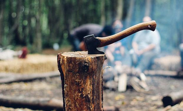 Ax Tree Stump