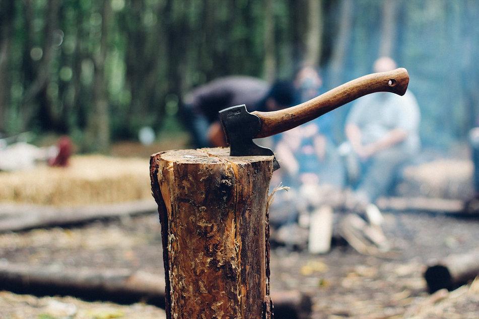 木の切り株で斧